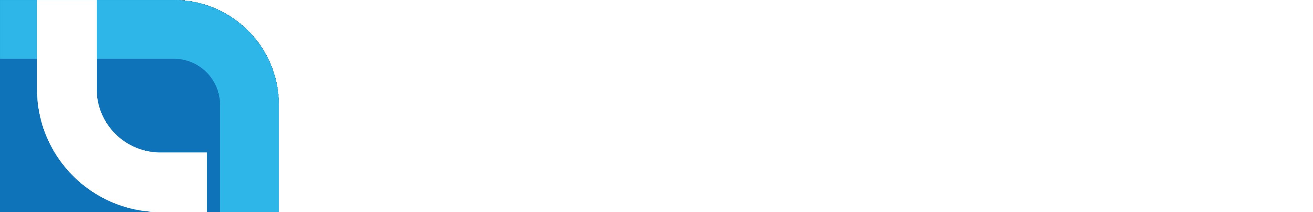 identity graphic of Pelindo